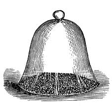 antique garden bell jar