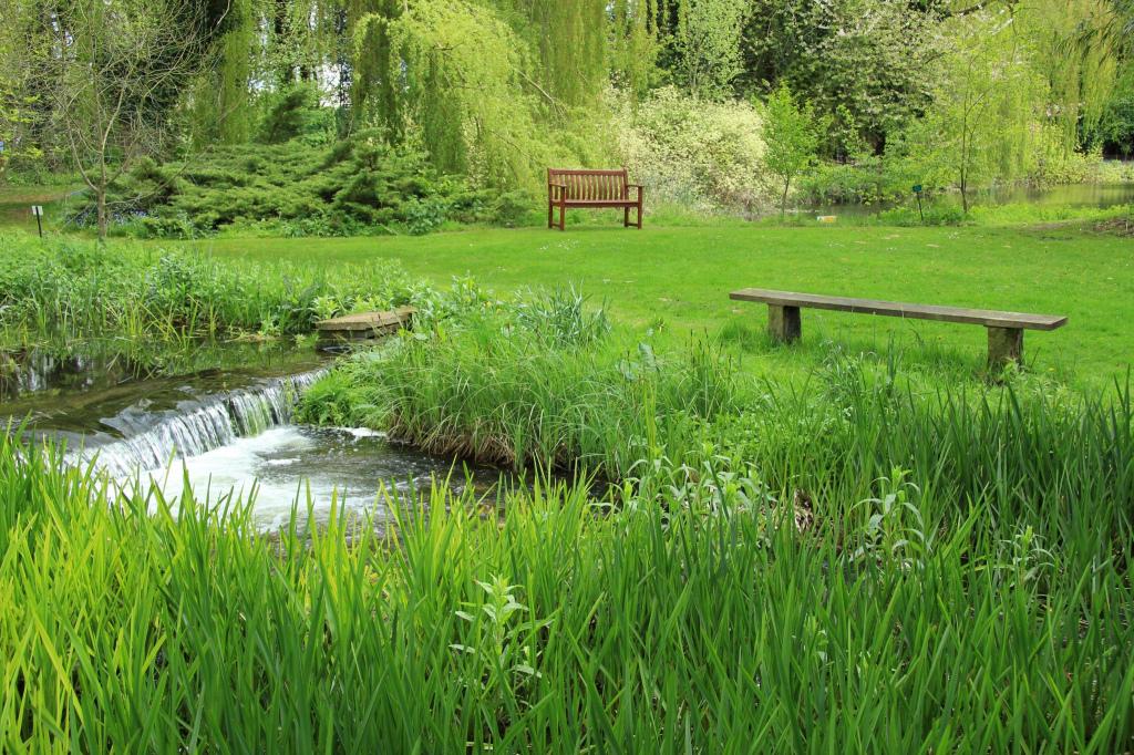 Zen Green Garden