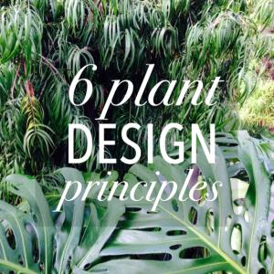 6 plant design principles