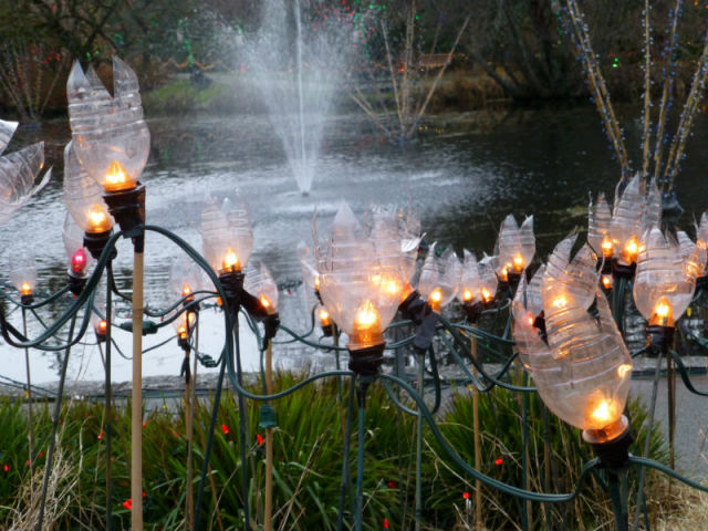 lights in front of the pond