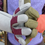 Magid and West County Rose Gloves