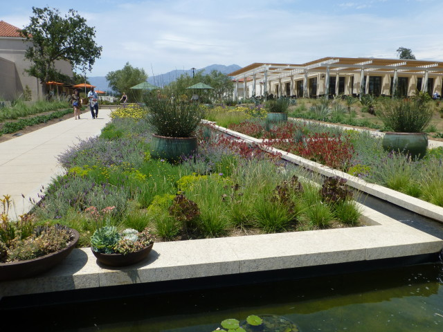 Celebration Garden and Water Feature