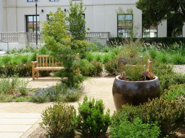 Renovated Entrance Garden Huntington Botanical Gardens