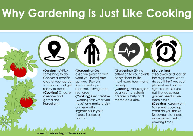 gardening_vs_cooking infographic
