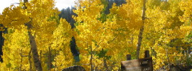 Marlette Lake, CA 2003