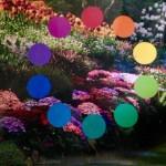 Garden Color Wheel