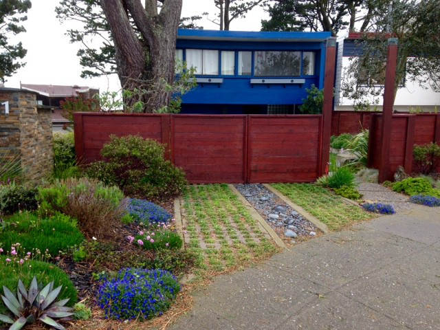 bright blue house with lithodora