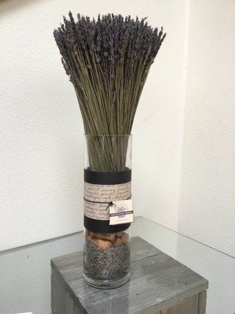 Dried Lavender in a Vase
