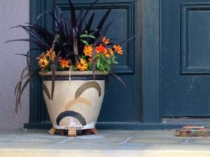 painted pot with autumn planting
