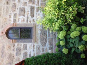 Mop-Head Hydrangeas: 5 of the Best for Summer Blooms!