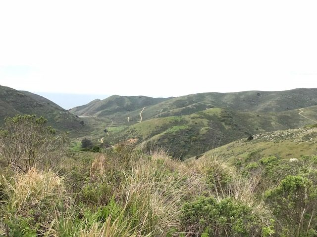 tennessee valley hike, marin ca
