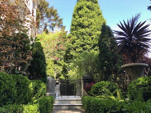 pyramidal shapes in garden design