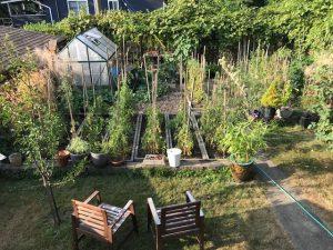 Vancouver edible home garden